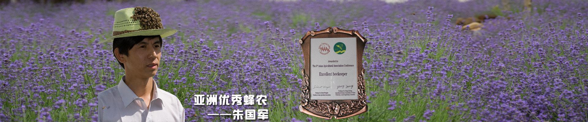 亚洲优秀蜂农——朱国军